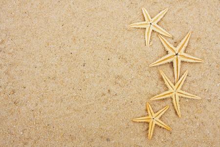 Starfish sitting on sand background, starfish border