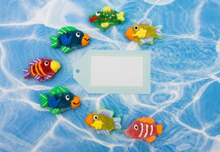 A large group of colourful fish with blank gift tag sitting on blue water background, colourful fish