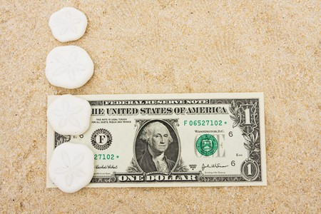 sand dollar: Sand dollars making a border with a dollar bill on sand background, sand dollar border