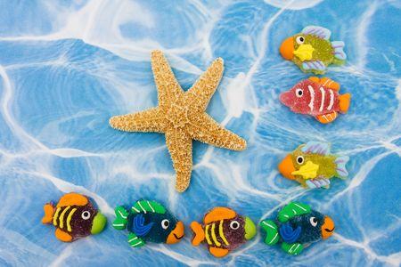 Un grupo grande de peces de colores con una estrella de mar sentado en el fondo de agua azul, frontera de peces de colores Foto de archivo - 5148126