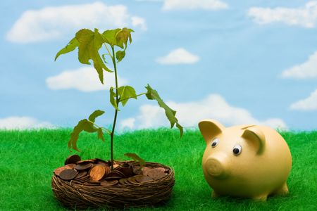 pennies: Piggy bank with a bowl of pennies that has a tree growing out of it on a sky background, growth in your savings Stock Photo