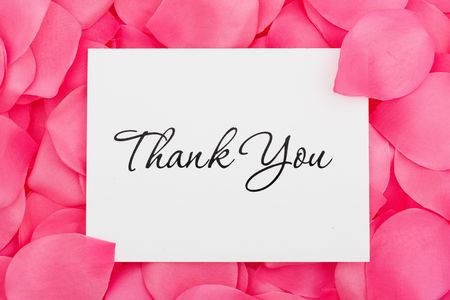 A thank you card sitting on a pink flower petal background, thank you with love Stock Photo - 5479523