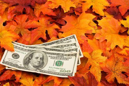 Four one hundred dollar bills sitting on a fall leaf background, money