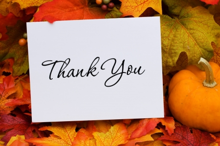 A thank you card with a gourd sitting on a fall leaf background, thank you photo