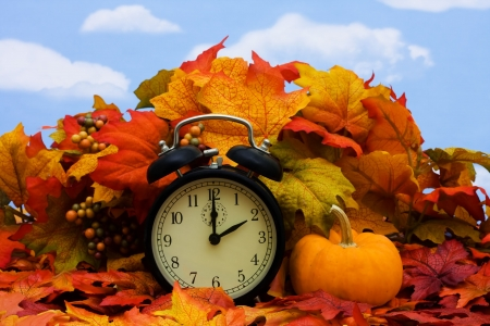 fall time: Fall coloured leaves with a black clock on a sky background, Fall Leaves