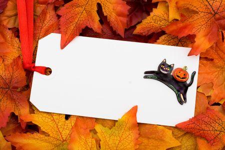 A blank tag on a fall leaf background, Fall Leaves photo