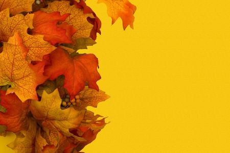 Fall leaves making a border on a yellow background, fall border photo