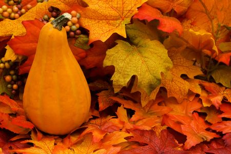 A pumpkin sitting on a fall leaves background, pumpkin Stock Photo