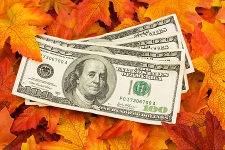 four in one: Four one hundred dollar bills sitting on a fall leaf background, money