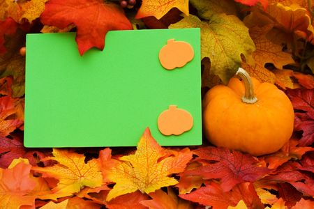 A blank card with a gourd sitting on a fall leaf background, blank card Stock Photo - 5741655