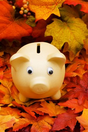 A pink piggy bank  sitting on a fall leaf background, savings  photo