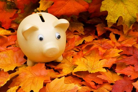 A pink piggy bank  sitting on a fall leaf background, savings  Banco de Imagens