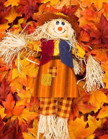 A scarecrow sitting on fall leaf background, scarecrow photo