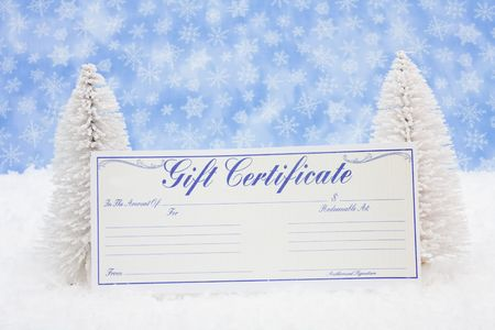 White evergreen trees sitting with a blank gift certificate with a blue snowflake background, gift certificate photo