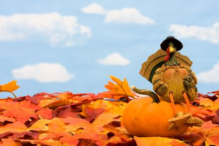 Fall leaves with a turkey and a gourd on a sky background, fall border photo