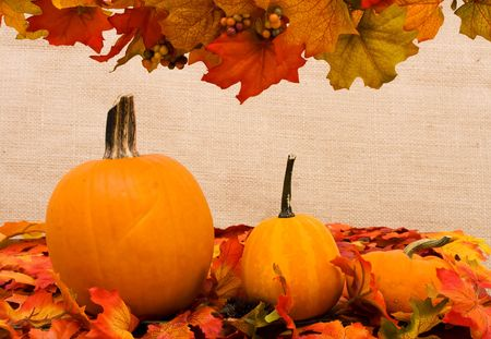Fall coloured leaves with a pumpkin on a beige background, Fall Leaves photo