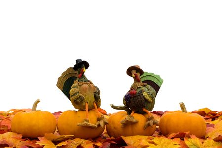 Fall leaves with a turkey and a gourd on a white background, fall border Stock Photo - 5826503