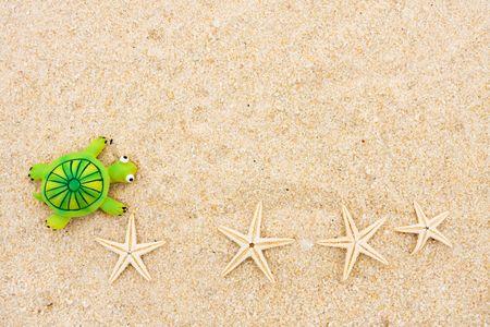 Een schild pad en starfish zittend op een achtergrond van zand, zee ster en schild pad  Stockfoto