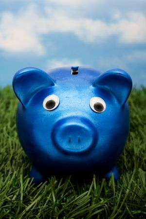 A blue piggy bank  sitting on grass with a sky blue background, savings  photo