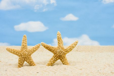 Starfish staande in het zand met hemelachtergrond, zee schelpen Stockfoto