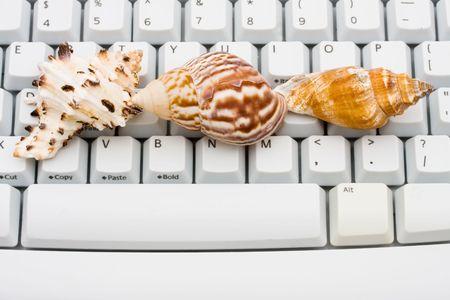 Drie schelpen zittend op een computer toetsen bord, online reizen  Stockfoto