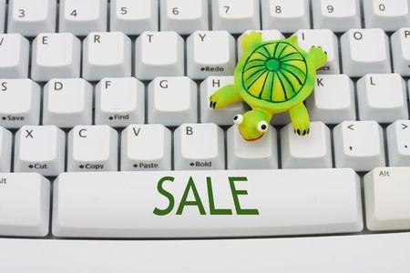Een schildpad zittend op een toetsenbord van de computer, de Online Travel