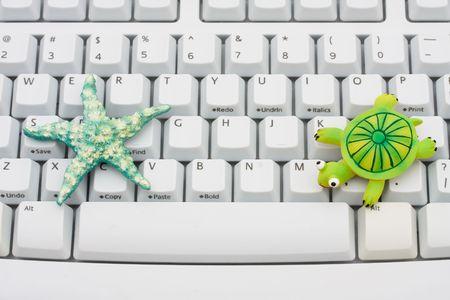 Een zeester en een schildpad zittend op een computertoetsenbord, Online reizen Stockfoto