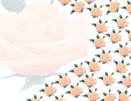 Light peach roses making a romantic border photo