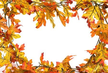 Fall leaves met eikels geïsoleerd op wit, val grens