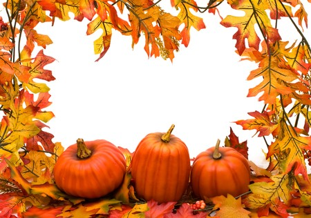 Fall leaves with pumpkins isolated on white, fall border photo