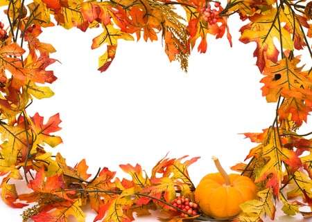 Fall leaves with a pumpkin isolated on white, autumn border photo