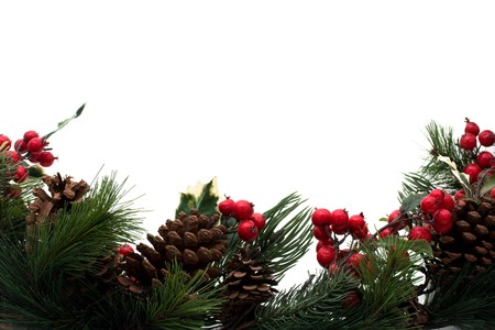 berry: Pine needs with pine cones and holly berry isolated over white, Winter border Stock Photo