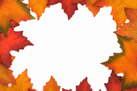 Fall Leaves as a border isolated on white with copy space, Autumn border photo