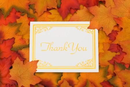 caes: Hojas de oto�o con una tarjeta de oro gracias, muchas gracias