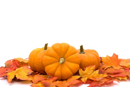 fall harvest: Pumpkins with fall leaves isolated on white, Autumn scene