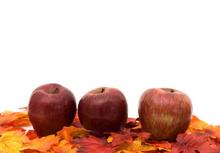 Apples with fall leaves isolated on white, Autumn scene Stock Photo - 7837175