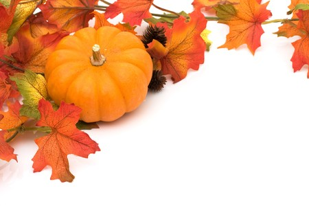 Pumpkin with fall leaves isolated on white, Autumn scene