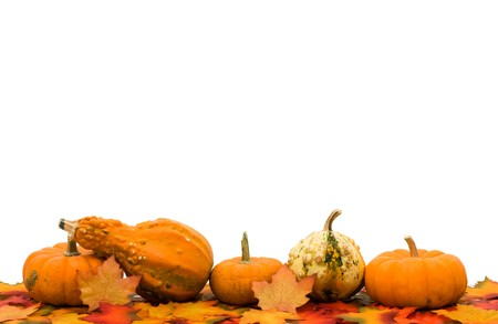 Fall leaves with pumpkins and gourds isolated on a white background, fall border Banco de Imagens
