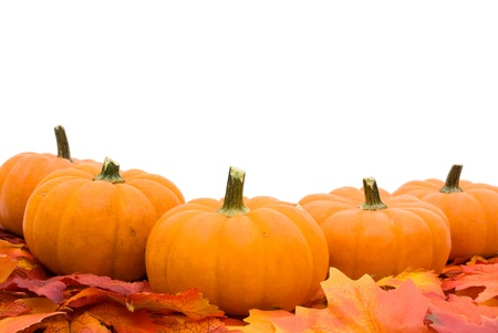 pumpkin border: Fall leaves with a pumpkin isolated on a white background, fall leaves border