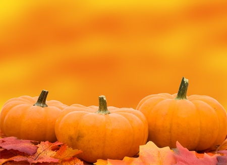 Fall leaves with a pumpkins  on an orange background, fall scene photo