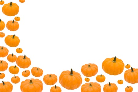 Pumpkins making a border isolated on a white background, autumn border photo