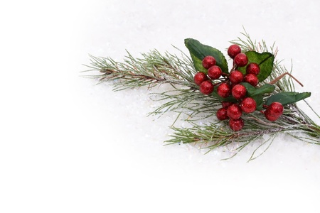 Holly and berries with a snow background, holly and berries background photo