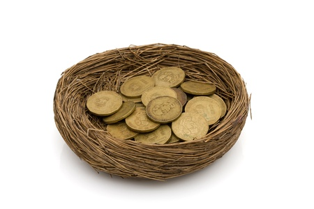 Gold coins in a nest isolated on white, Saving for your retirement