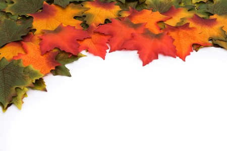 changing colors: Green, orange, red leaves with some changing colors border isolated over a white background, The changing of the seasons