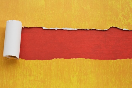 Torn paper background with texture and copy space for your text