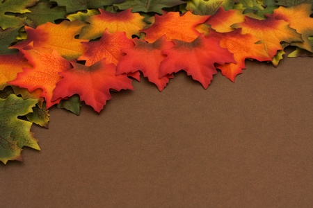 changing colors: Green, orange, red leaves with some changing colors border over a brown background, The changing of the seasons