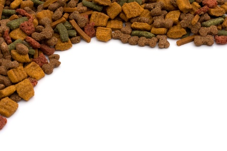 chew over: Dog food isolated on white, doggy food Stock Photo