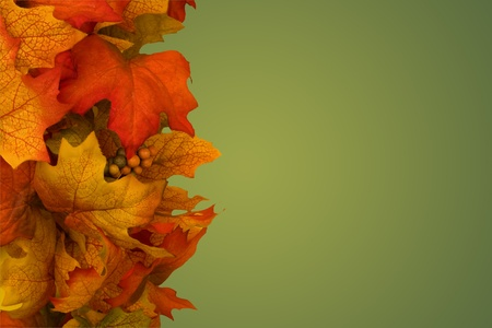 fall leaves border: Fall Leaves with copy space, Autumn border Stock Photo
