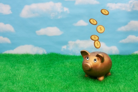 A gold piggy bank on grass with sky background with coins falling from sky, Becoming wealthy photo