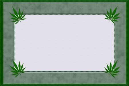 leaf marijuana: Un marco verde material de la marihuana con bordes costura y copia espacio para el texto